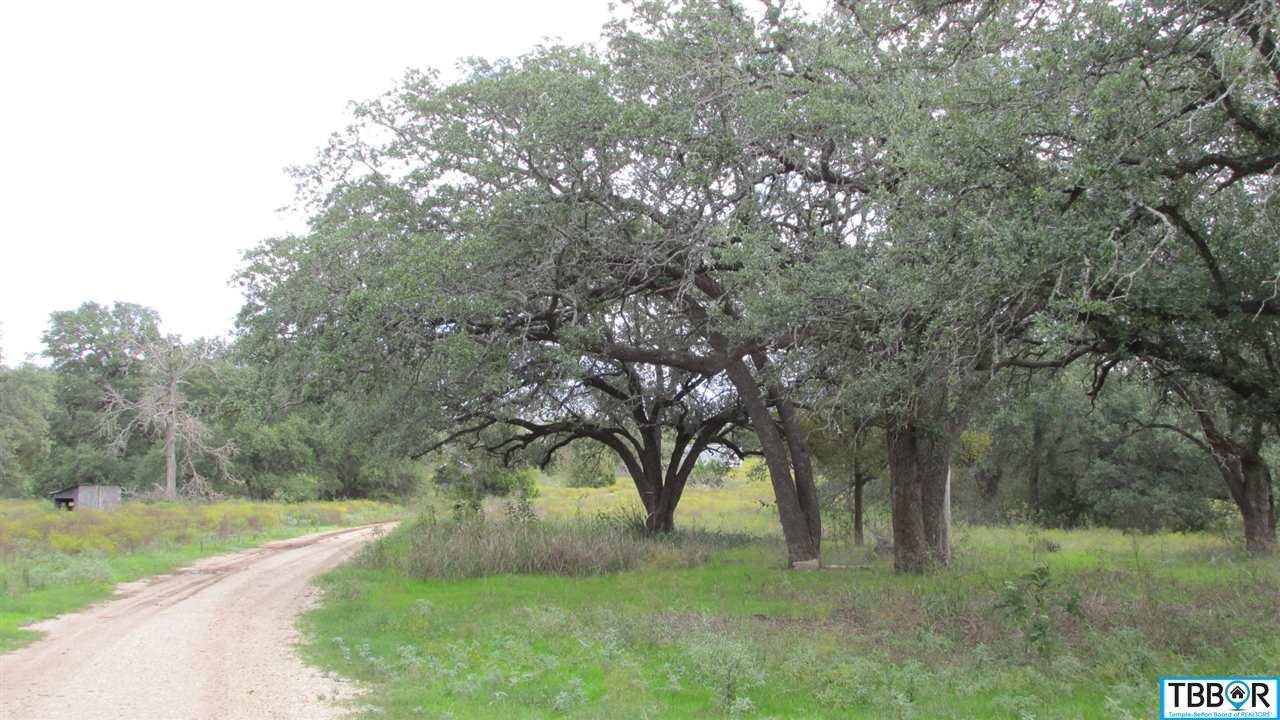 72.58 Acres Fm 439, Belton TX 76513 - Photo 2