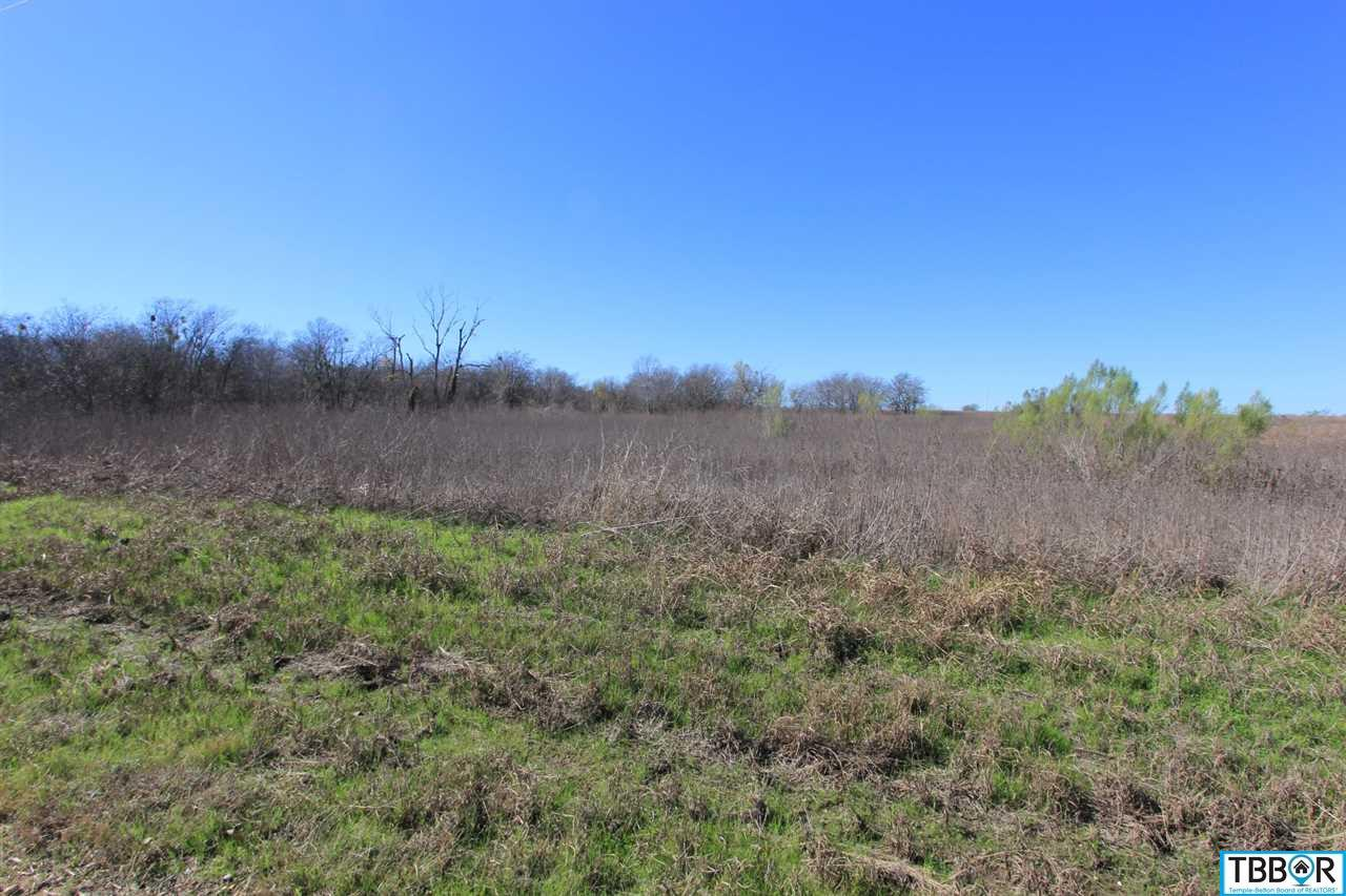 Tract 4 Wallace Road, Holland TX 76534 - Photo 2