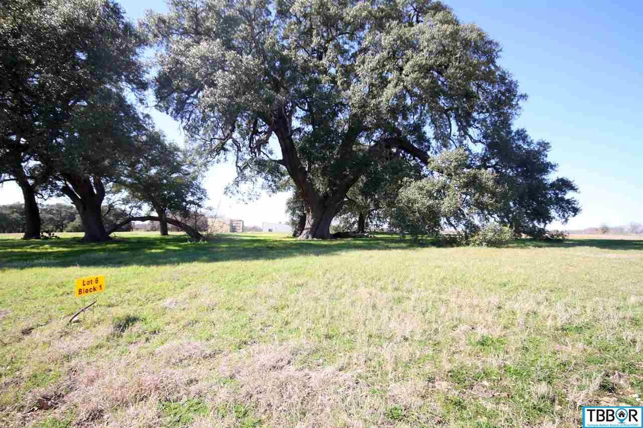 1201 Heritage Lane, Belton TX 76513 - Photo 1