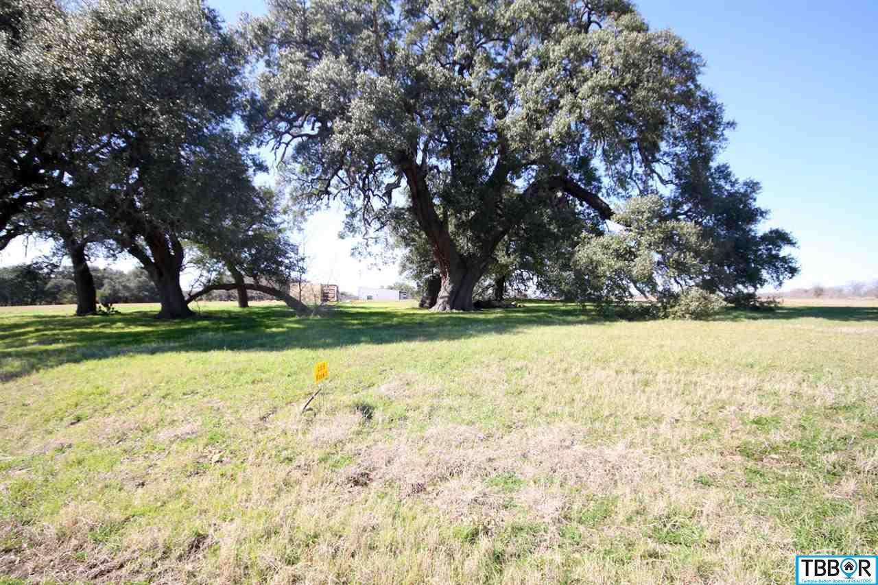 1201 Heritage Lane, Belton TX 76513 - Photo 2