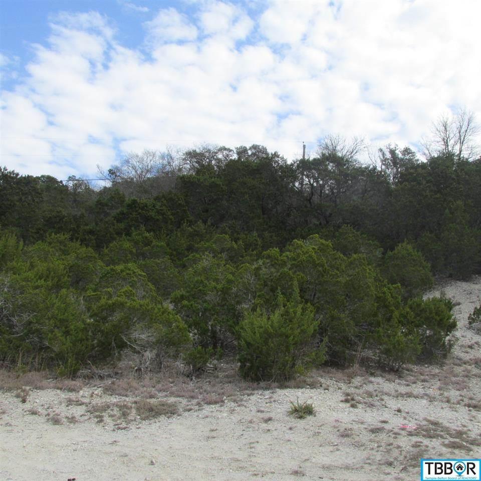 4264/4268 Bluebonnet Dr., Belton TX 76513 - Photo 2