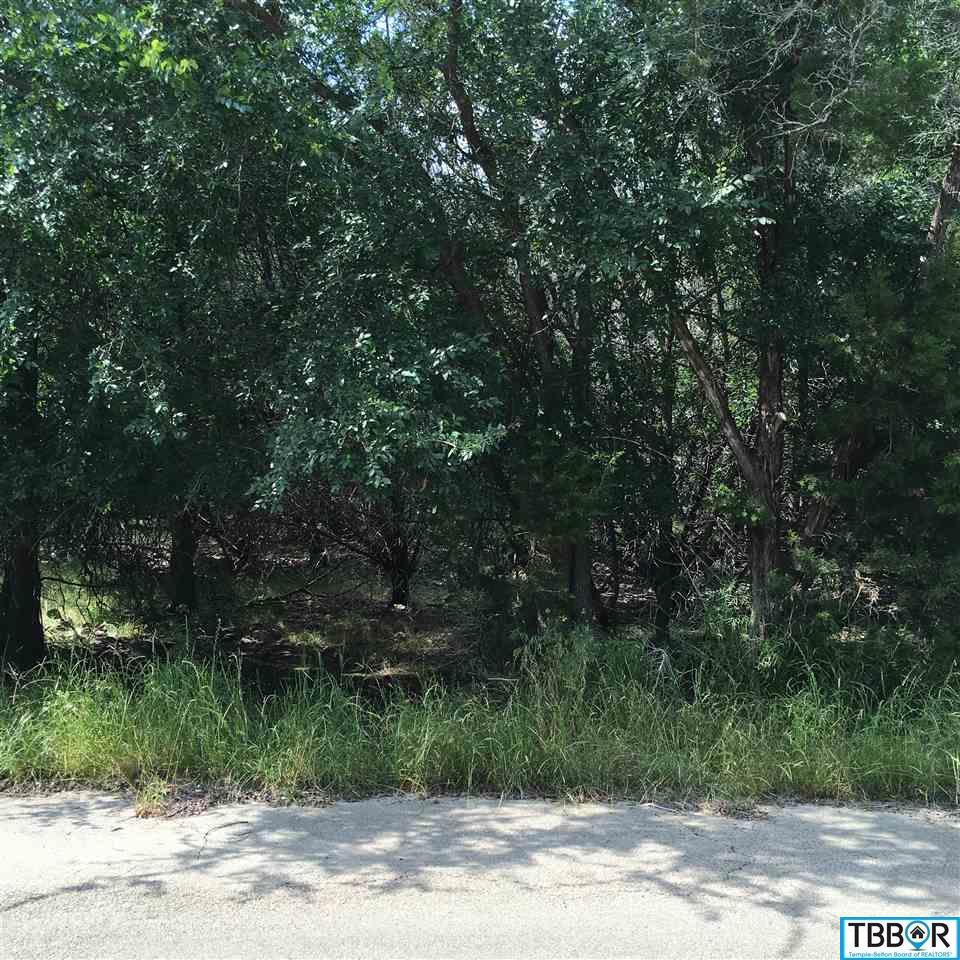 23 Dogwood, Morgans Point TX 76513 - Photo 1