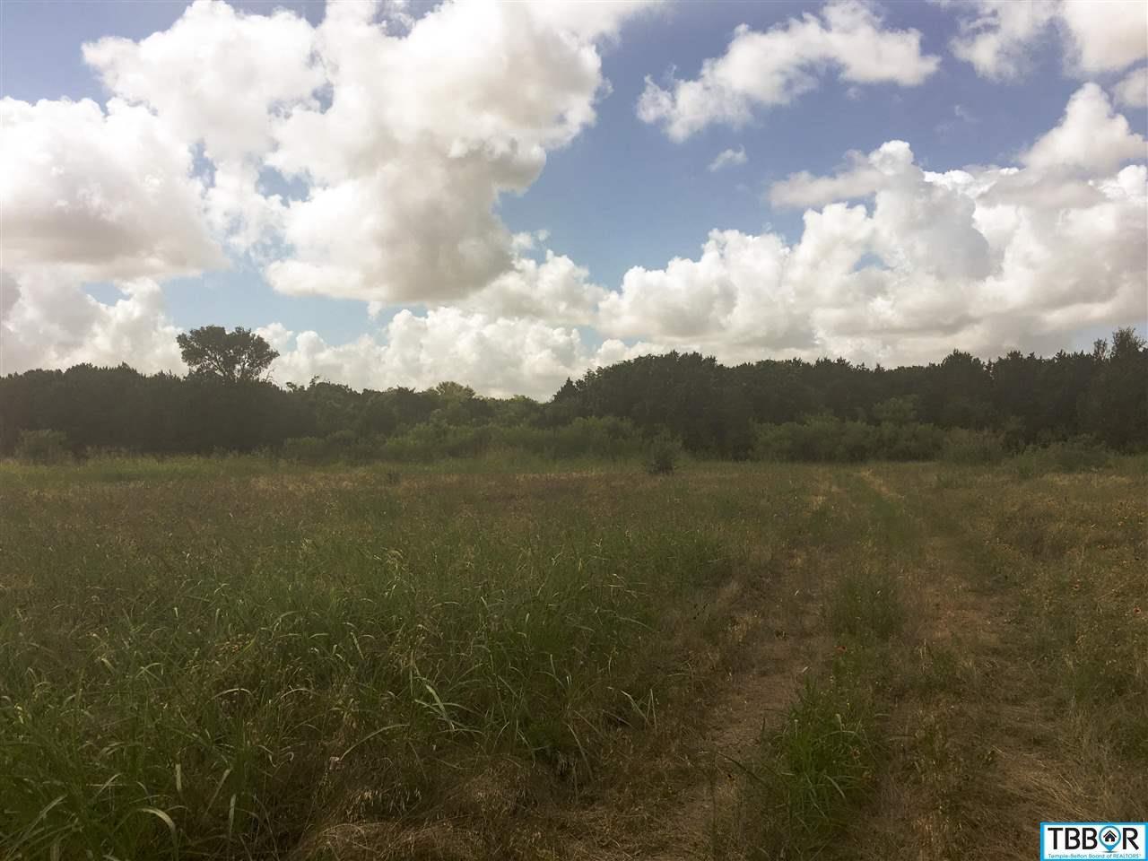 Tbd Mountain Ridge Drive, Belton TX 76513 - Photo 1