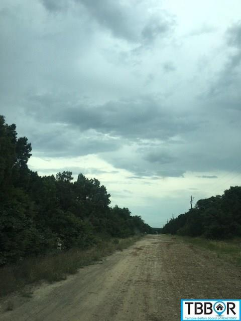 6013 Buggy Ride Rd, Temple TX 76501 - Photo 2