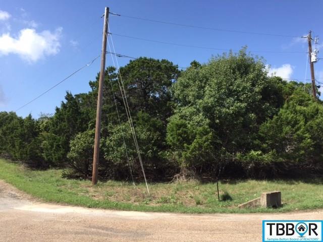 16346 Charlya Dr., Temple TX 76502 - Photo 2