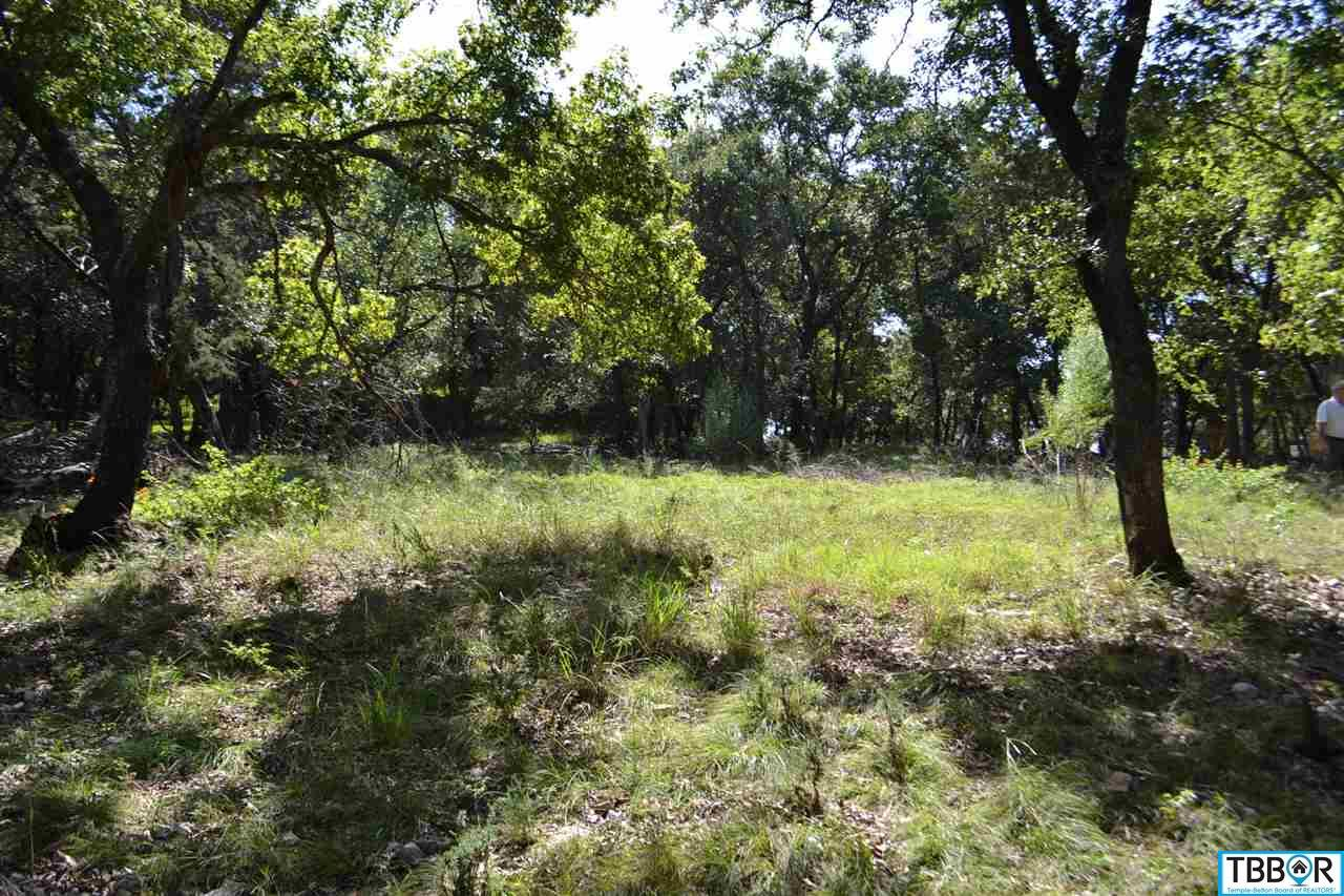 9795 Arroyo, Belton TX 76513 - Photo 1