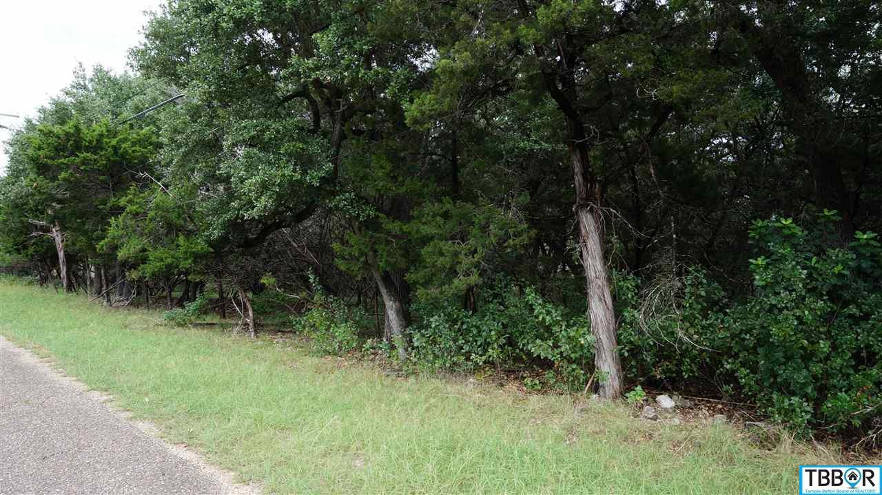 000 Prickly Pear Lane, Belton TX 76513 - Photo 2