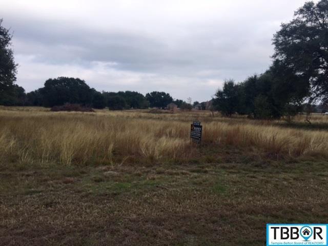 000 Mission Trail, Salado TX 76571 - Photo 2