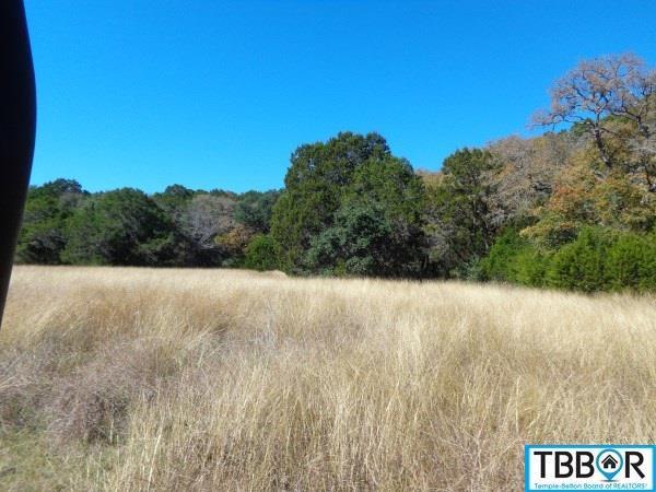 1325 Russell Rd, Gatesville TX 76528 - Photo 2