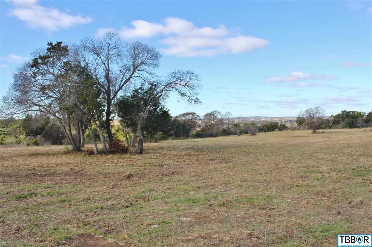 121 Indian Ridge Road, Belton TX 76513 - Photo 1