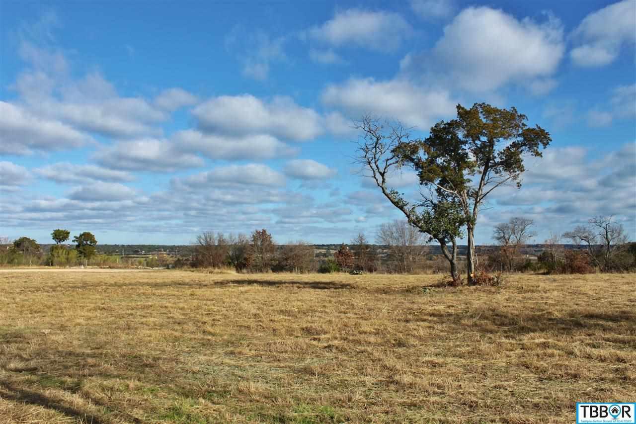 166 Indian Ridge Road, Belton TX 76513 - Photo 1