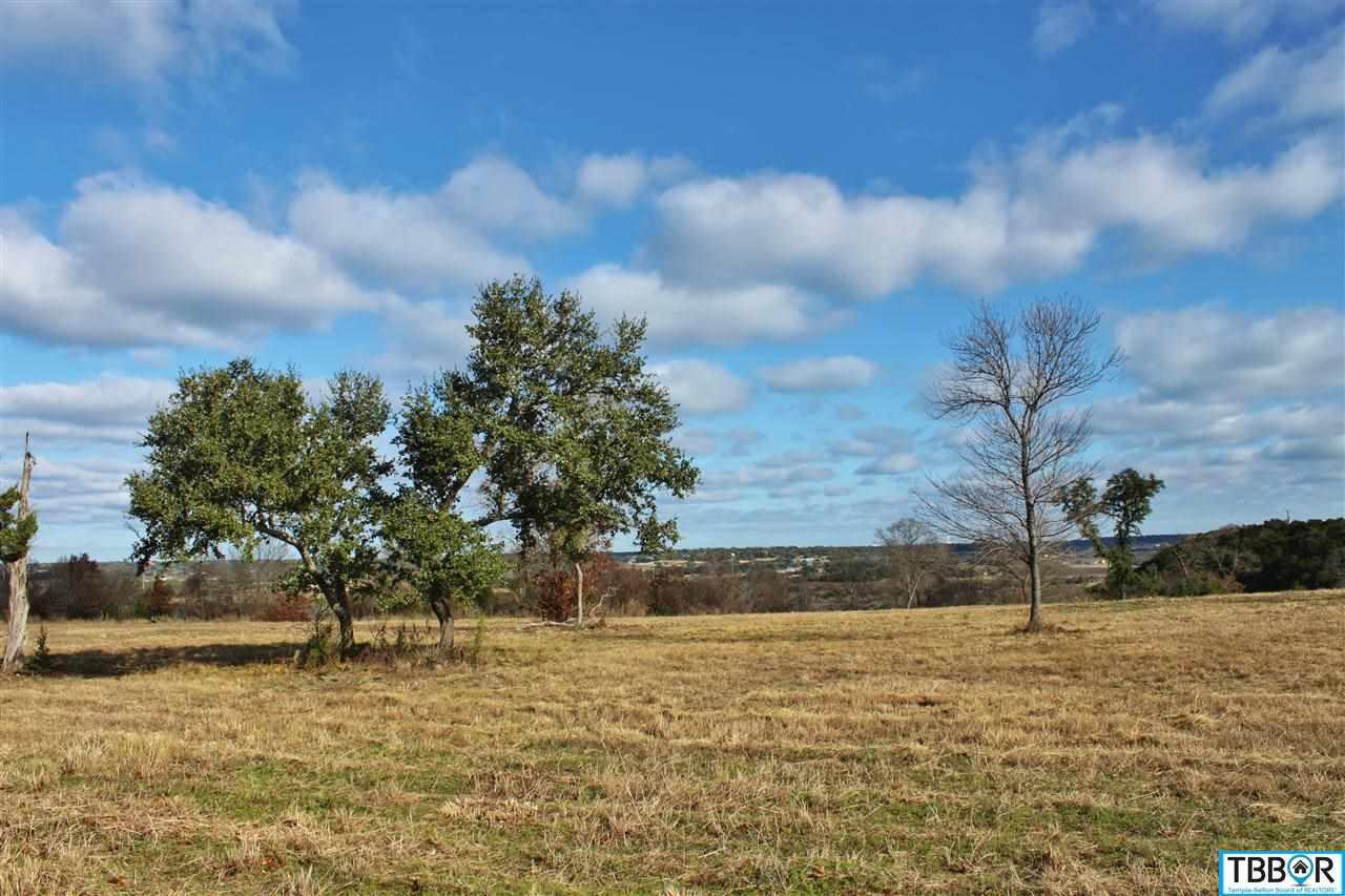 144 Indian Ridge Road, Belton TX 76513 - Photo 1