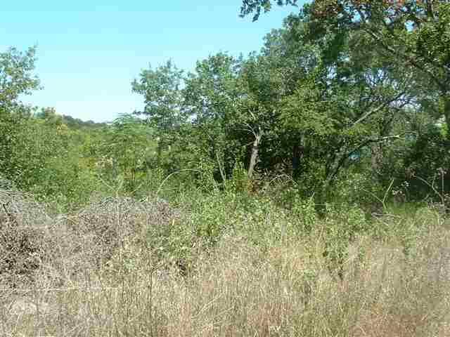 0000 Leila Lane, Belton TX 76513 - Photo 1