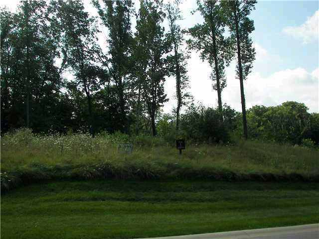 7341 Creekbed Lane, Indianapolis IN 46256 - Photo 1
