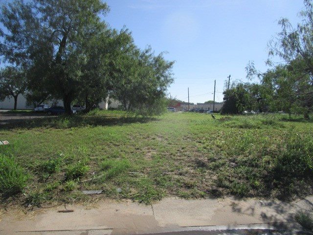 811 S Bridge Avenue, Weslaco TX 78596 - Photo 1