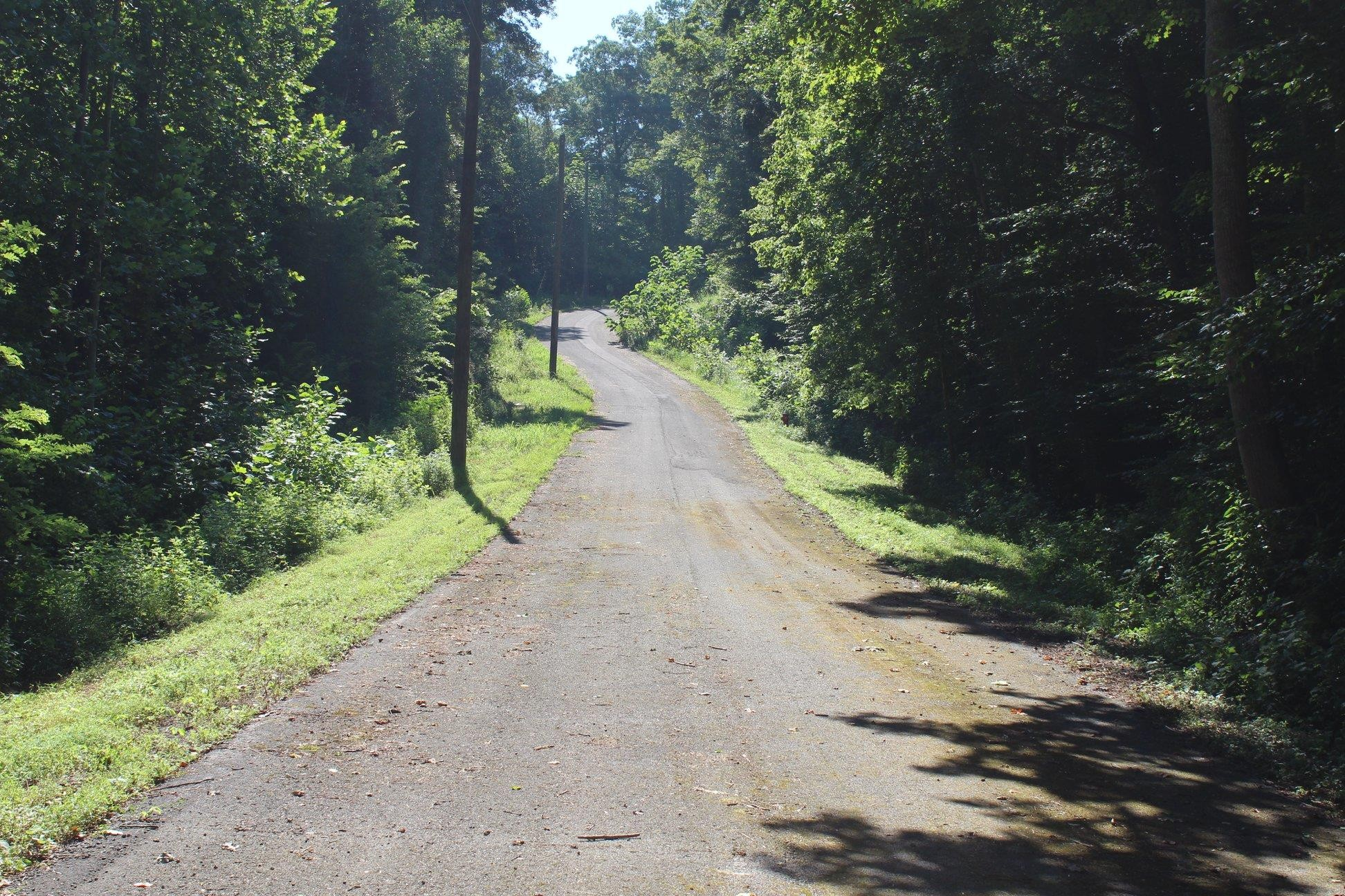7655 Chipmunk Ln, Nashville TN 37221 - Photo 2