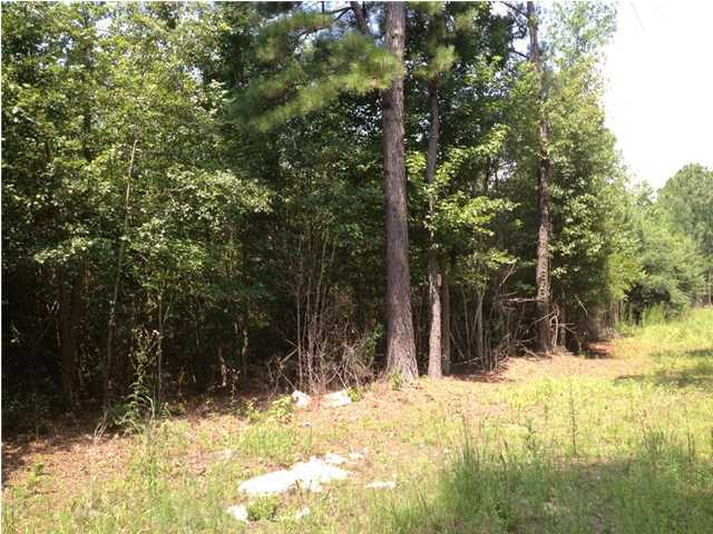 0 Red Hill Road, Ridgeville SC 29472 - Photo 1