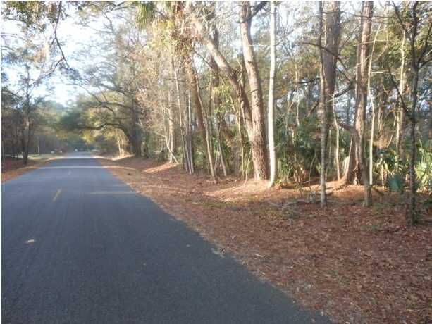 8046 Cedar Hall Road, Edisto Island SC 29438 - Photo 2