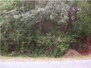 0 Highway 162, Hollywood SC 29449 - Photo 1