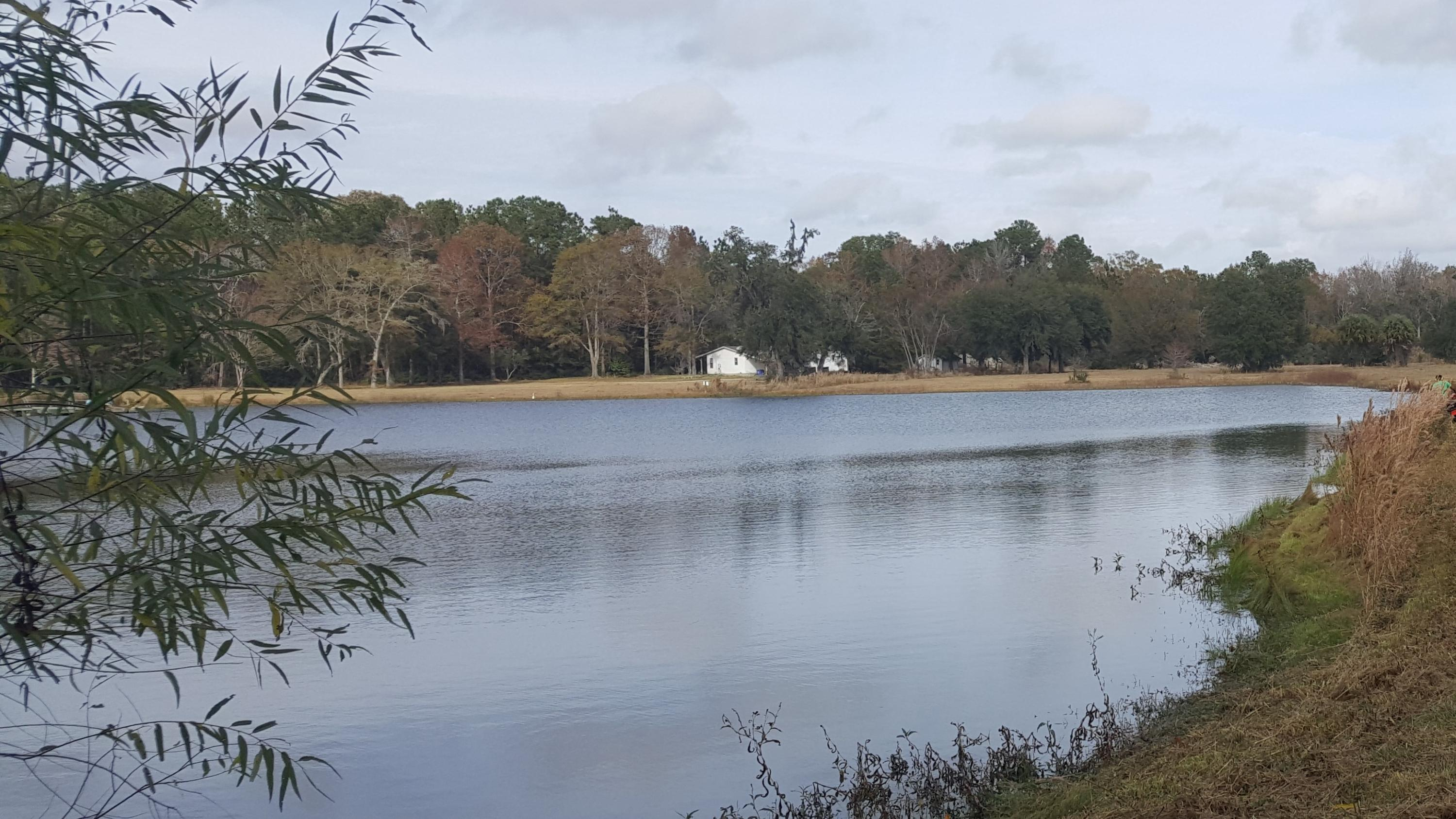 4169 Chisolm Road, Johns Island SC 29455 - Photo 2
