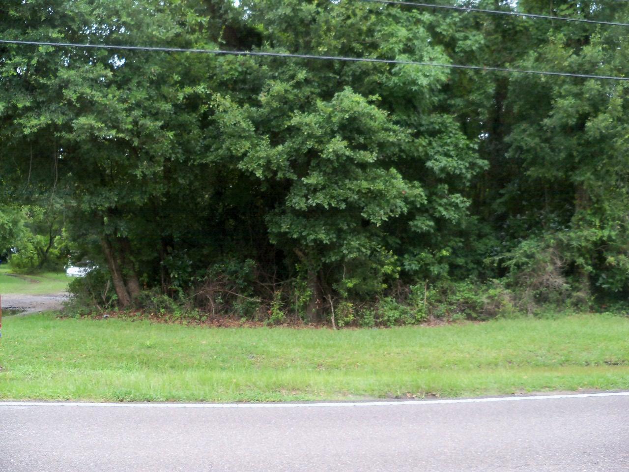 0 Grimball Rd, Charleston SC 29412 - Photo 1