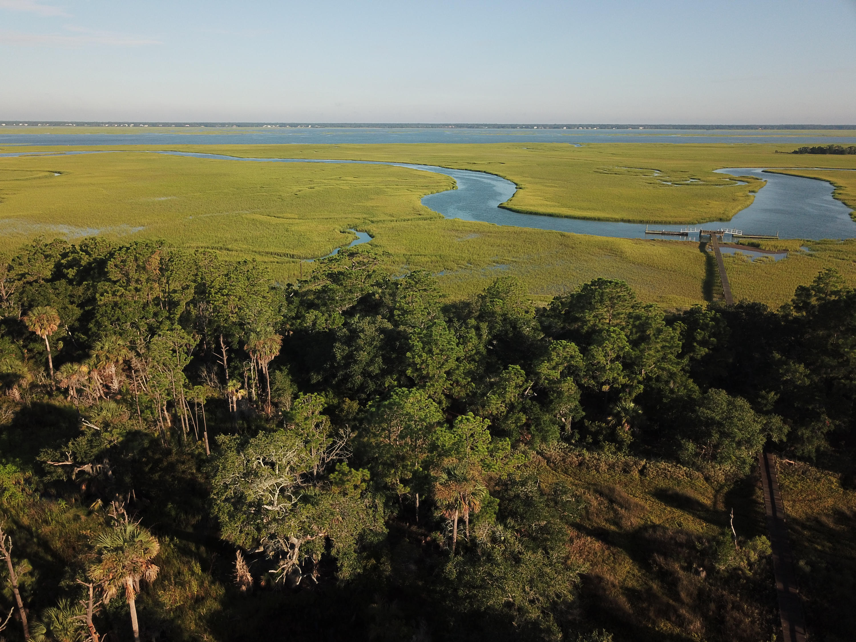 Lot 120 Old House Lane, Dewees Island SC 29451 - Photo 2