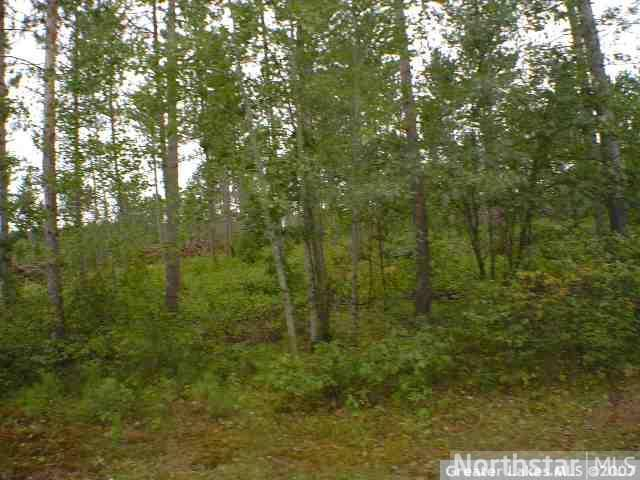 Lot 4 Blk 1 Riverwood Shores, Pillager MN 56473 - Photo 2