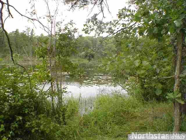 Lot 5 Blk 1 Riverwood Shores, Pillager MN 56473 - Photo 2