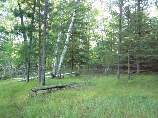 Lot 2 Blk 1 Falling Leaf Trail, Park Rapids MN 56470 - Photo 2