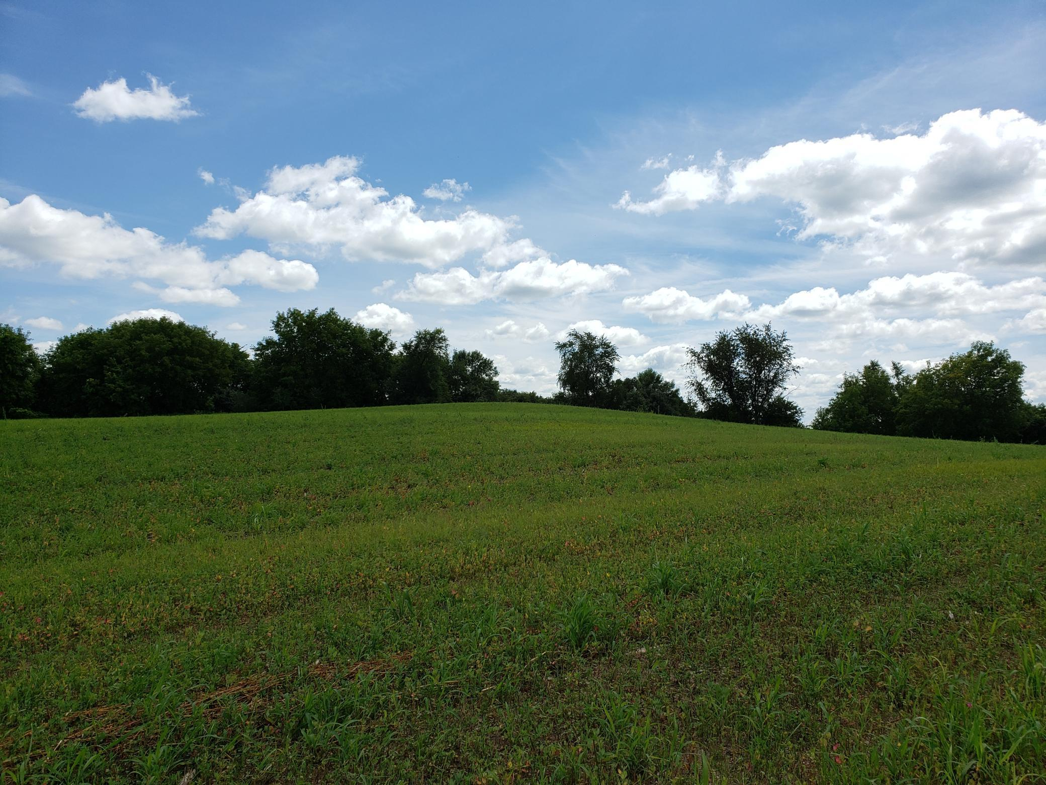Lot 5 State Highway 15, Kimball MN 55353 - Photo 2
