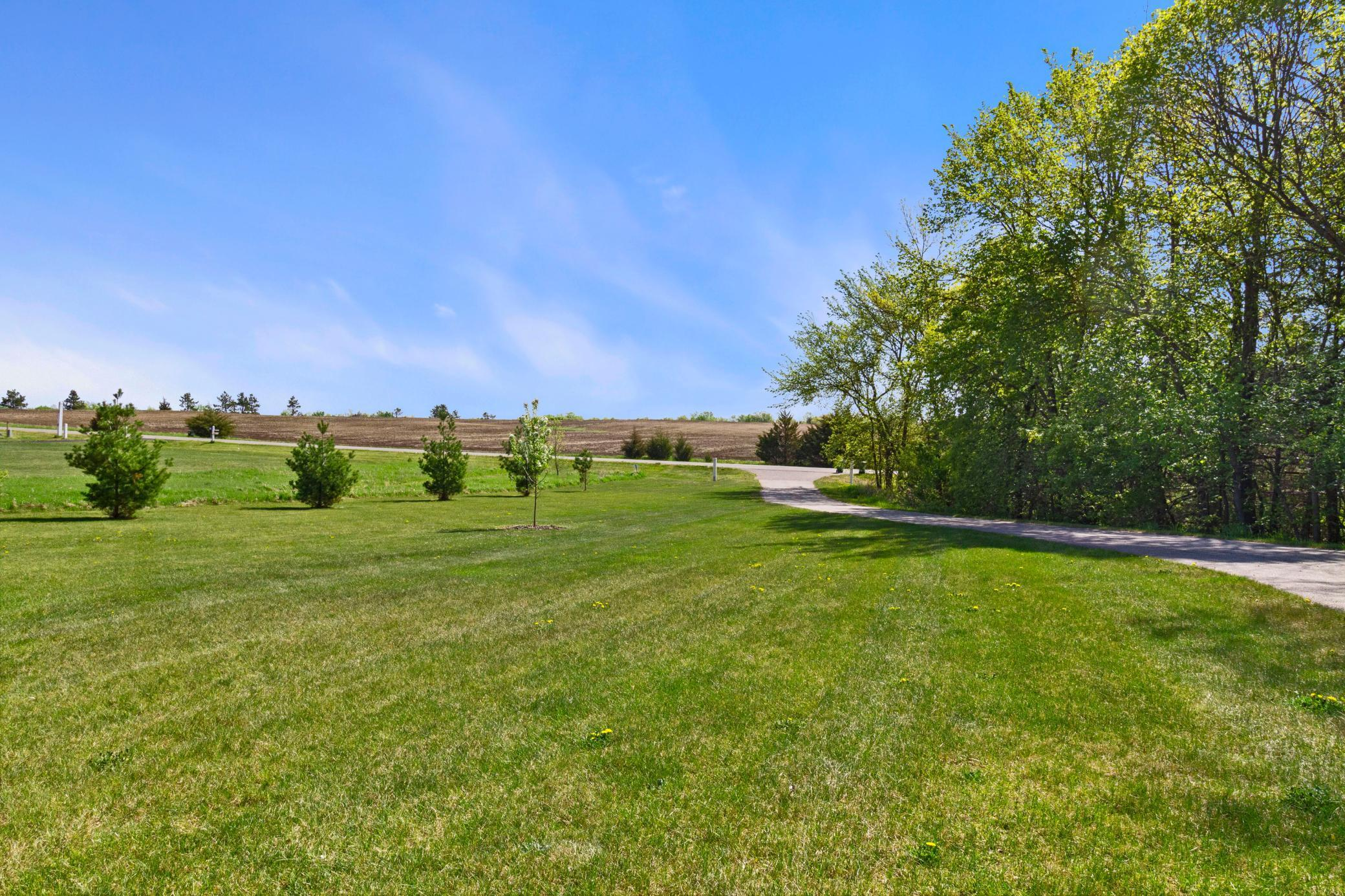 13237 58th Avenue, South Haven MN 55382 - Photo 2
