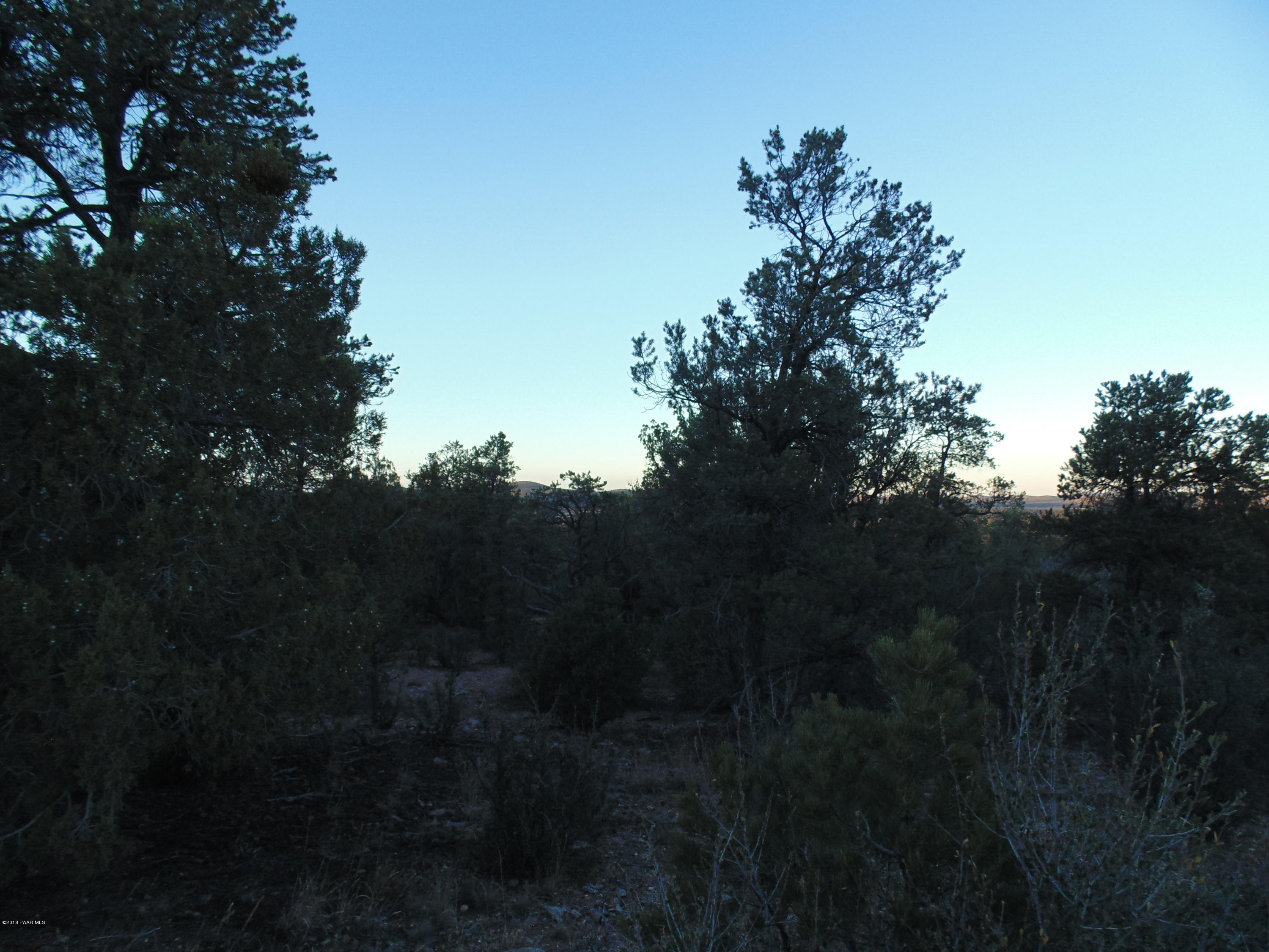 375 Sierra Verde Ranch # 375, Seligman AZ 86337 - Photo 1