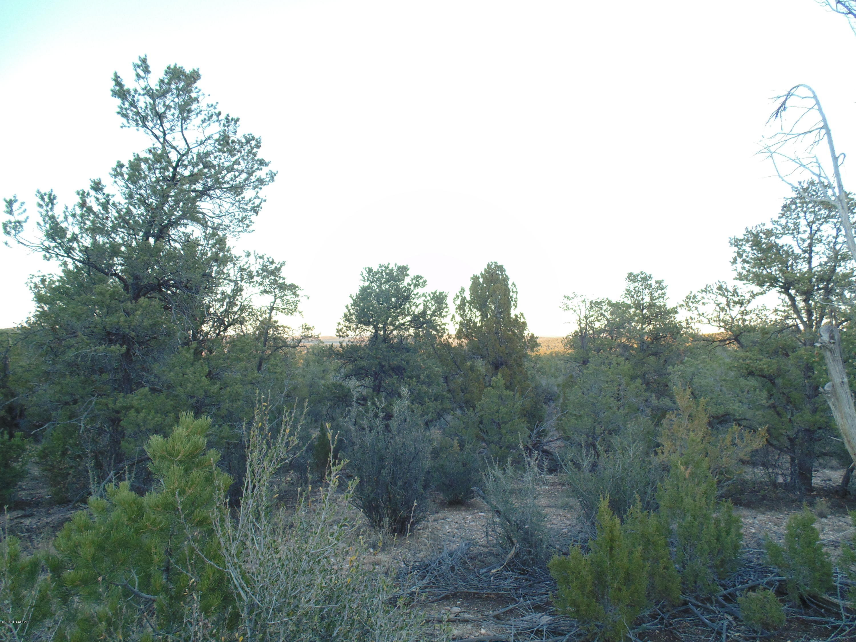 375 Sierra Verde Ranch # 375, Seligman AZ 86337 - Photo 2