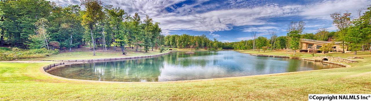 9 Autumn Glory Lane, Huntsville AL 35803 - Photo 2