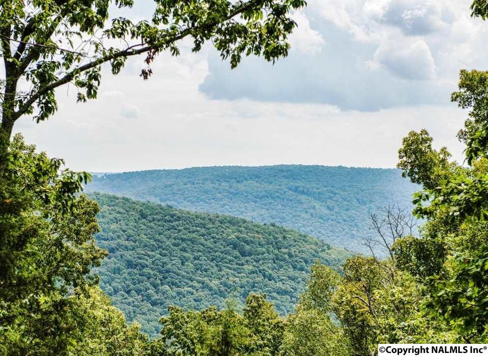 1 South Bluff Trail, Huntsville AL 35803 - Photo 1