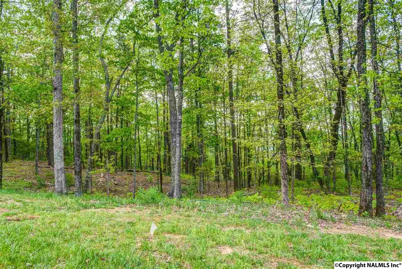 1 South Bluff Trail, Huntsville AL 35803 - Photo 2