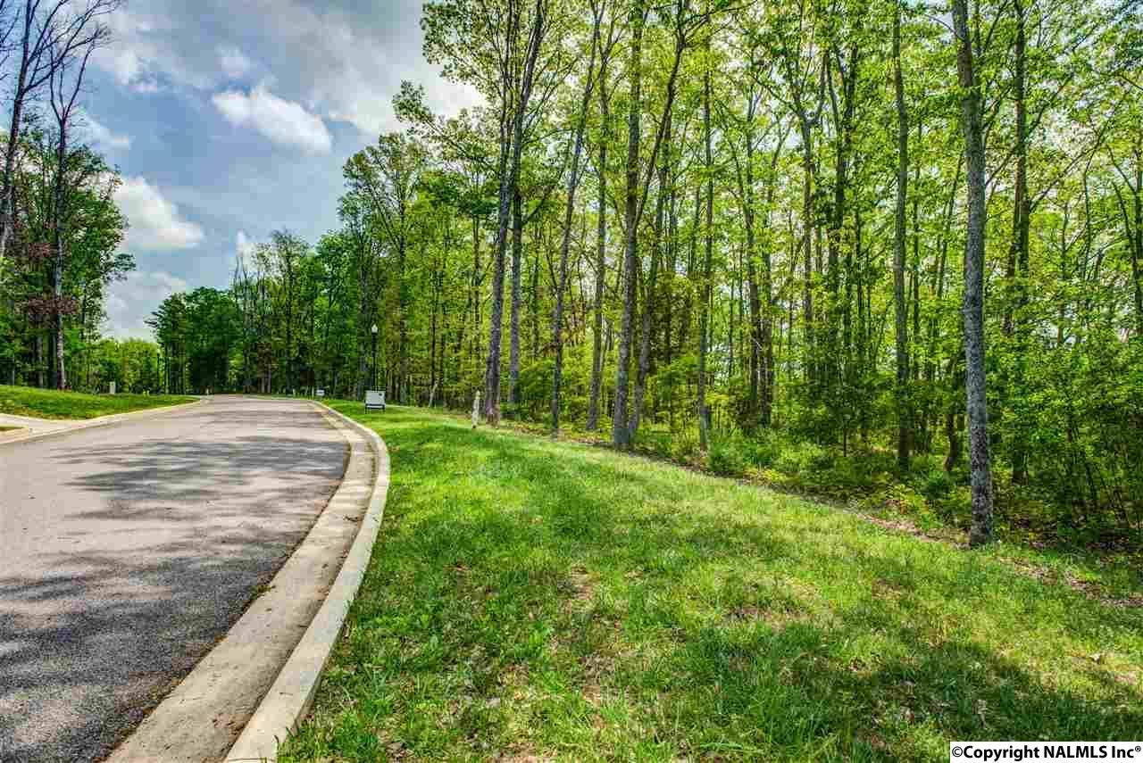 3 South Bluff Trail, Huntsville AL 35803 - Photo 1