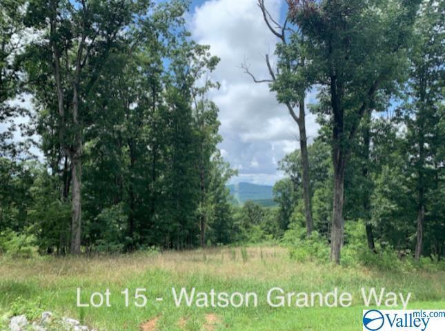 Lot 15 Watson Grande Way, Owens Cross Roads AL 35763 - Photo 1