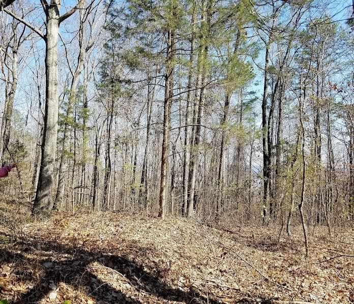1 Cardessa Lane, Grant AL 35747 - Photo 1