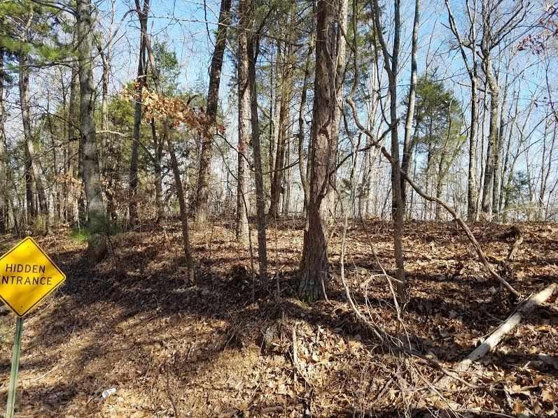 1 Cardessa Lane, Grant AL 35747 - Photo 2