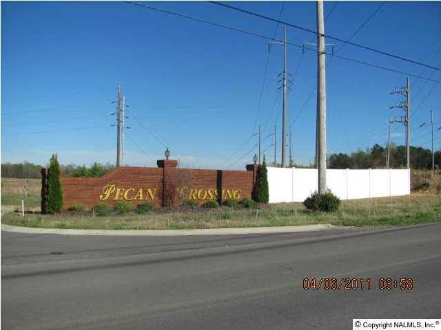 30 Pecan Crossing Drive, Albertville AL 35950