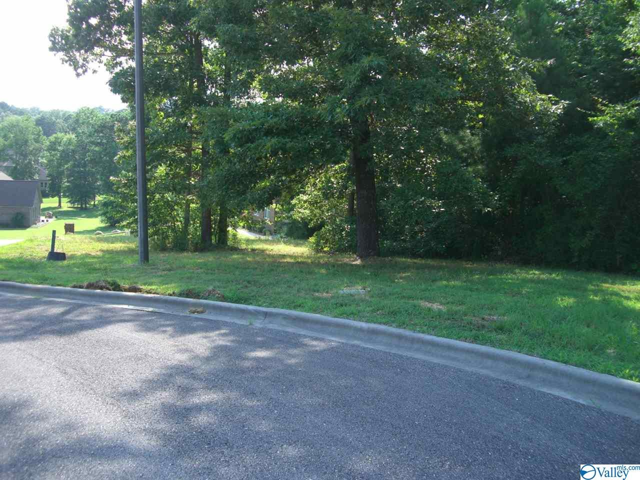 Lot 24 Paradise Place, Scottsboro AL 35769