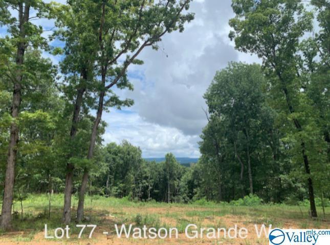 44 Watson Grande Way, Owens Cross Roads AL 35763