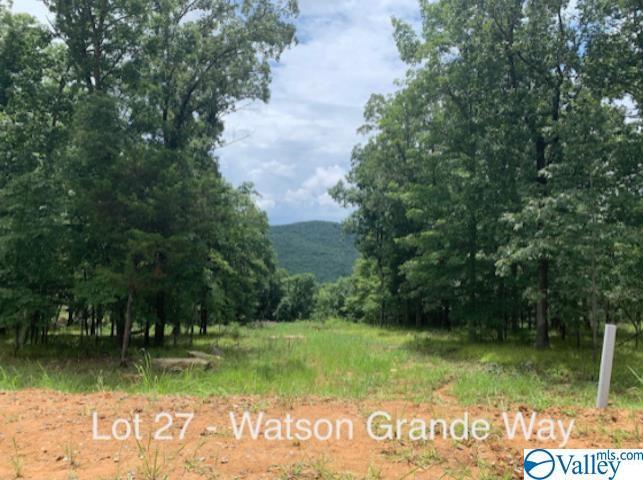 53 Watson Grande Way, Owens Cross Roads AL 35763