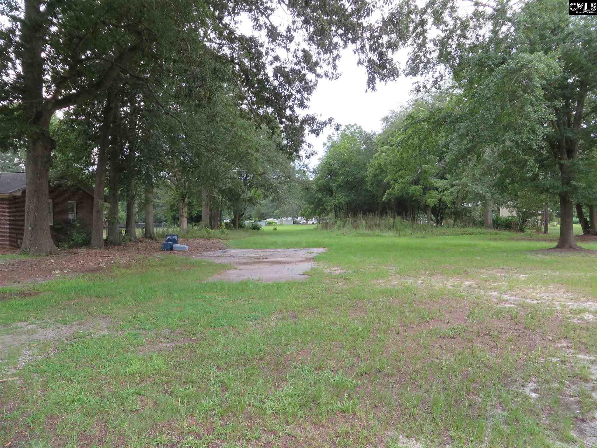 232 E Columbia Avenue, Leesville SC 29070 - Photo 1