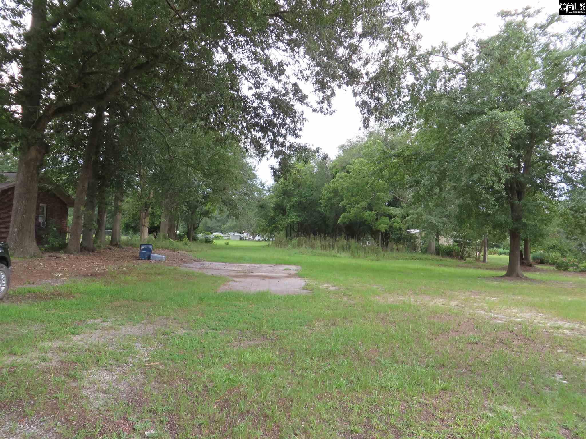 232 E Columbia Avenue, Leesville SC 29070 - Photo 2