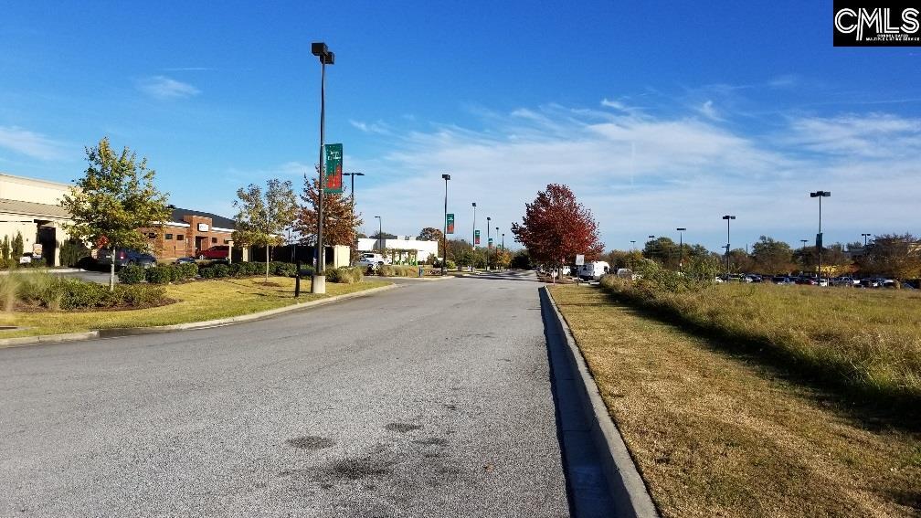 Lot 1 Highway 378, Lexington SC 29072 - Photo 1