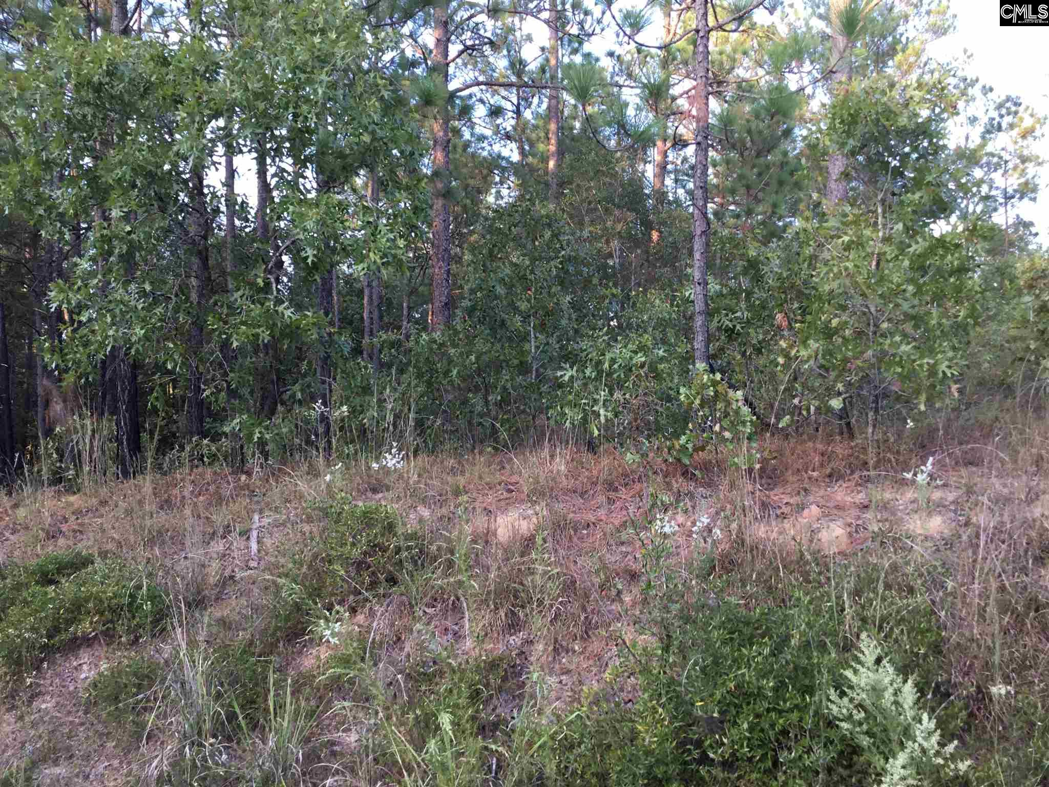 0 Eastover Road, Eastover SC 29044 - Photo 2