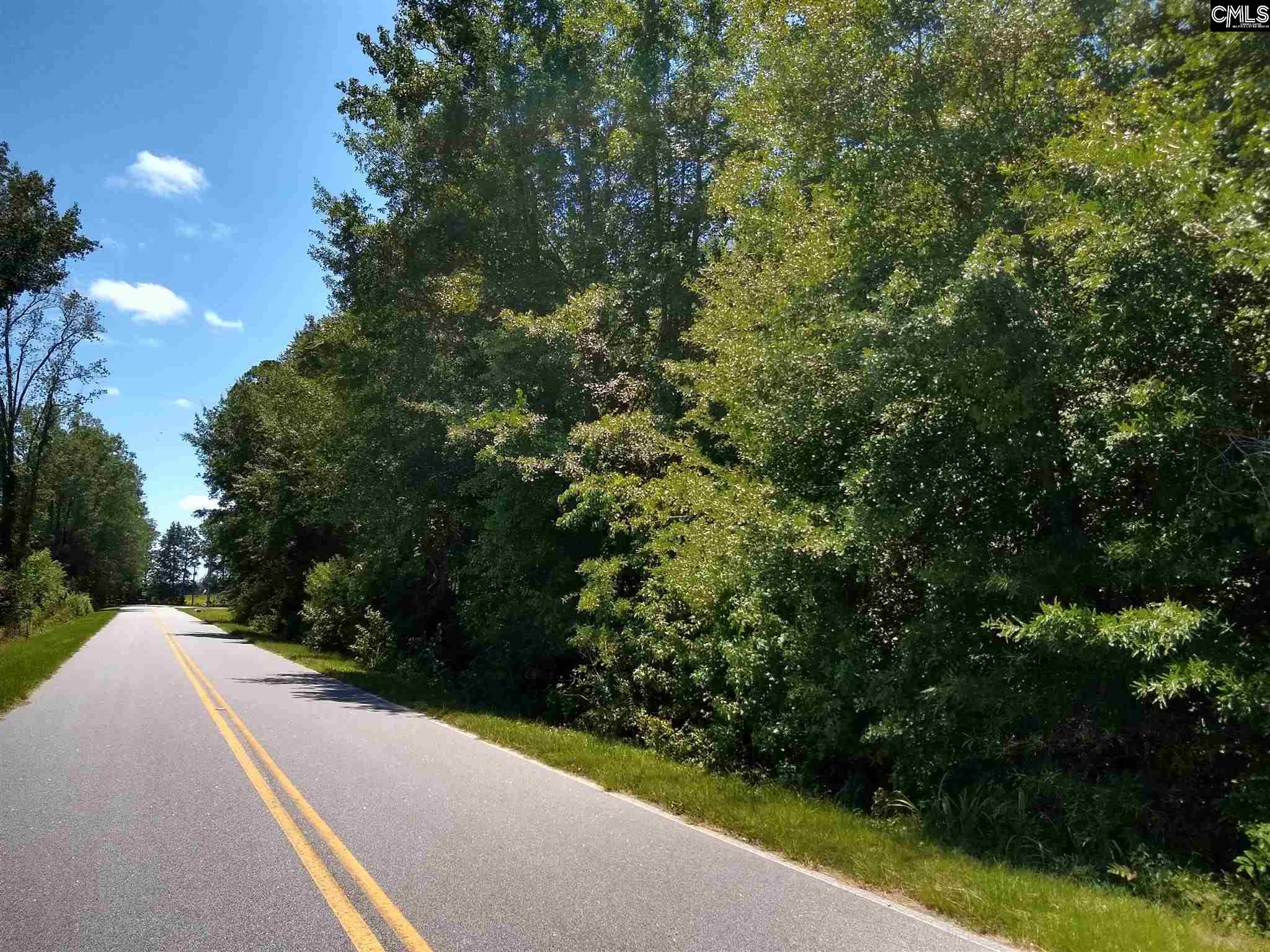 0 Calvary Lane, Cheraw SC 29520 - Photo 1