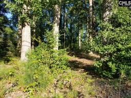 306 Reed Avenue Lot 2 Lexington